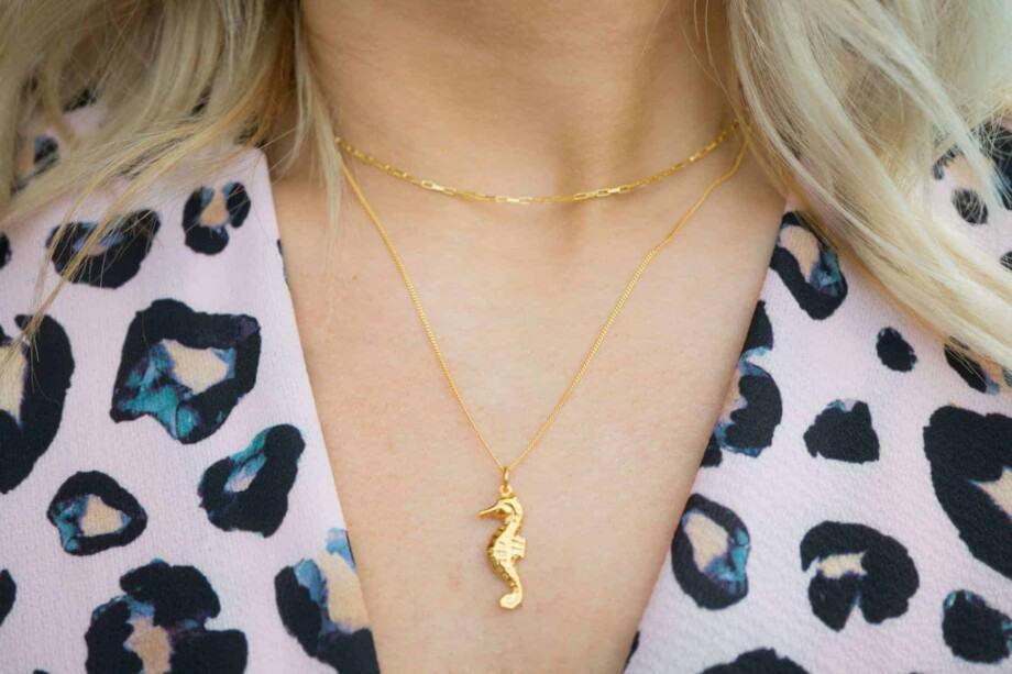 Gouden ketting met hanger zeepaardje