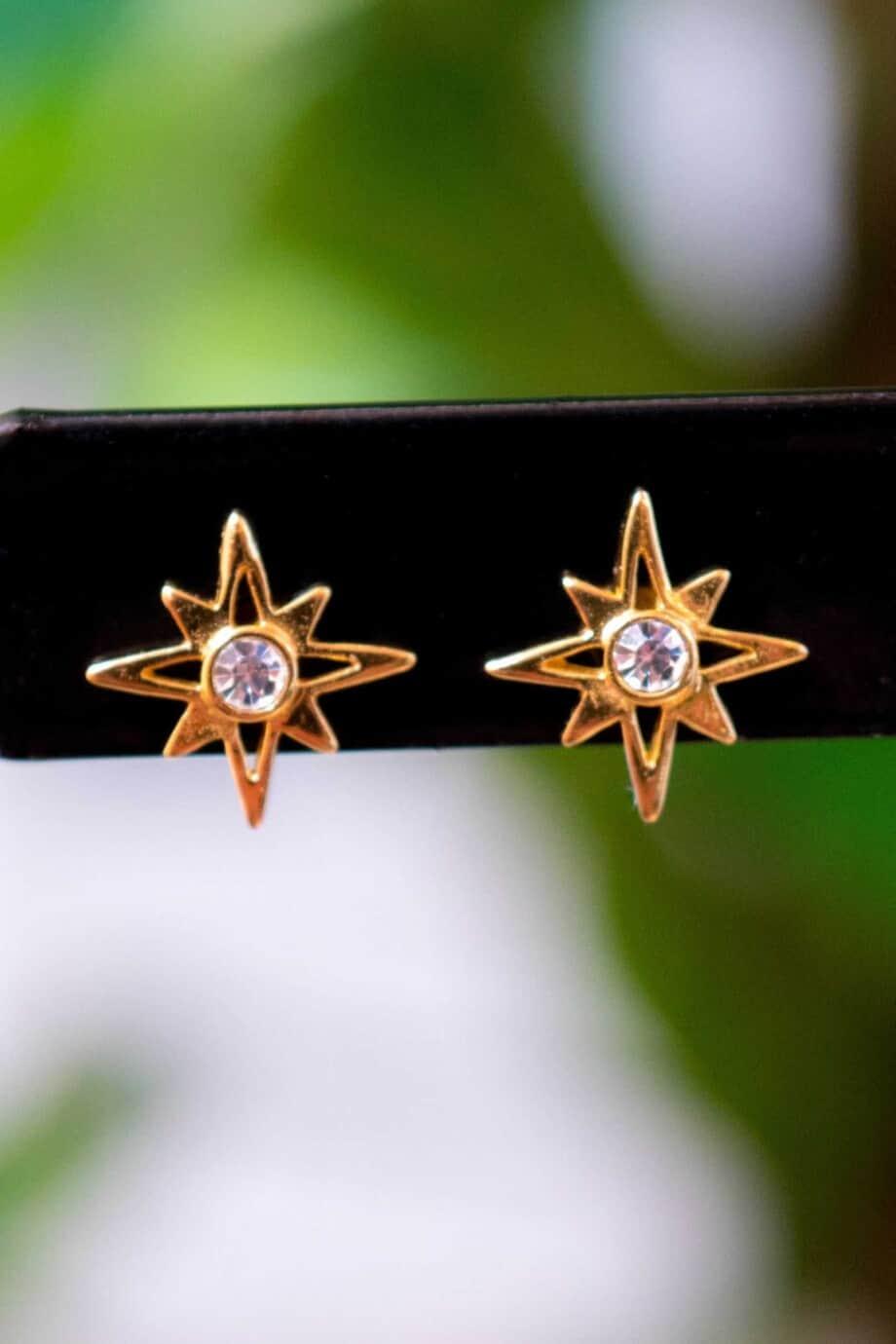 Gouden oorbellen 'Crystal star' van Goud Vermeil