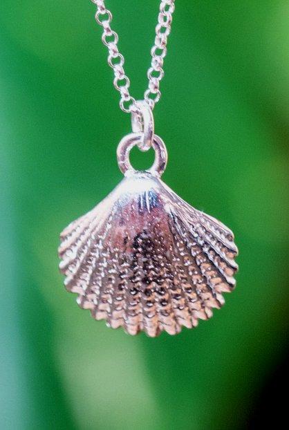Sterling Zilveren ketting met schelpje hanger